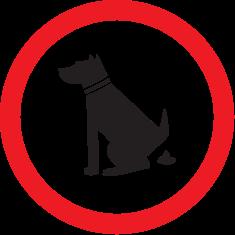 собака в знаке
