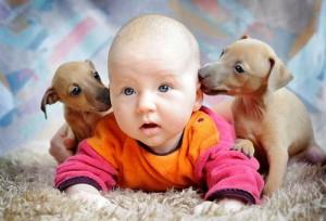 Deti_i_givotnie
