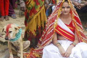 Заміж за собаку - цікаве про тварин