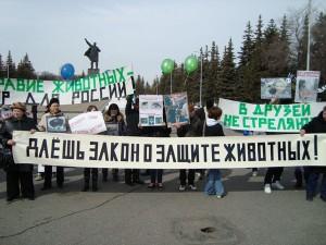 день защиты животных митинг