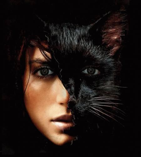 кошка ведьма