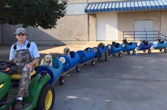 Пенсионер из Америки сделал поезд для собак