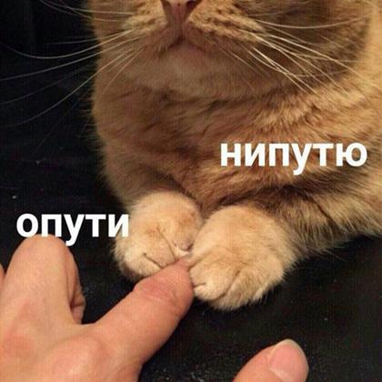 нипутю
