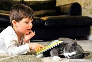 малыш с книжкой и кот