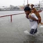 филиппинец спасает собаку от наводнения