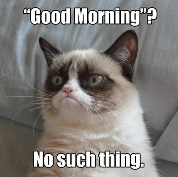 "- ""Доброе утро?"" - Не думаю!"