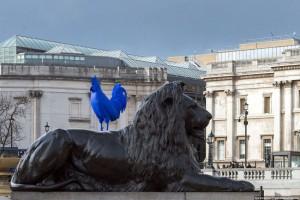 синий петух Трафальгар