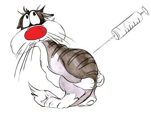 кот и шприц рисунок