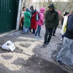 В московском зоо-приюте «ЭКО Вешняки» убивают животных?