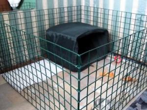 Вольер-клетка для собак с домиком внутри