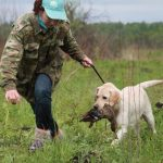 Путин подписан новый закон о дрессировке охотничьих собак🐺