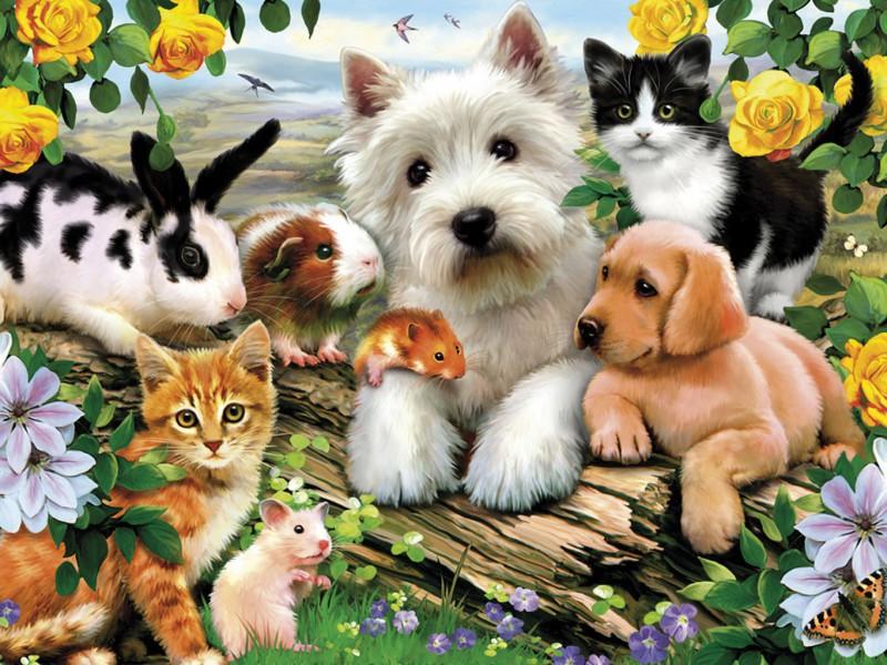 всемирный день дмашних животных 30 ноября