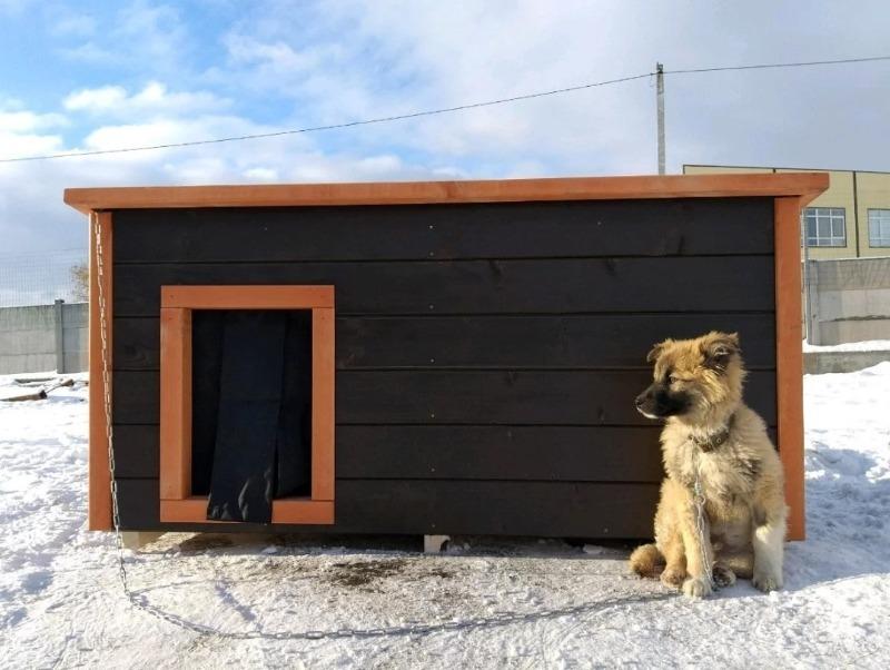 блокпост для собаки - домик